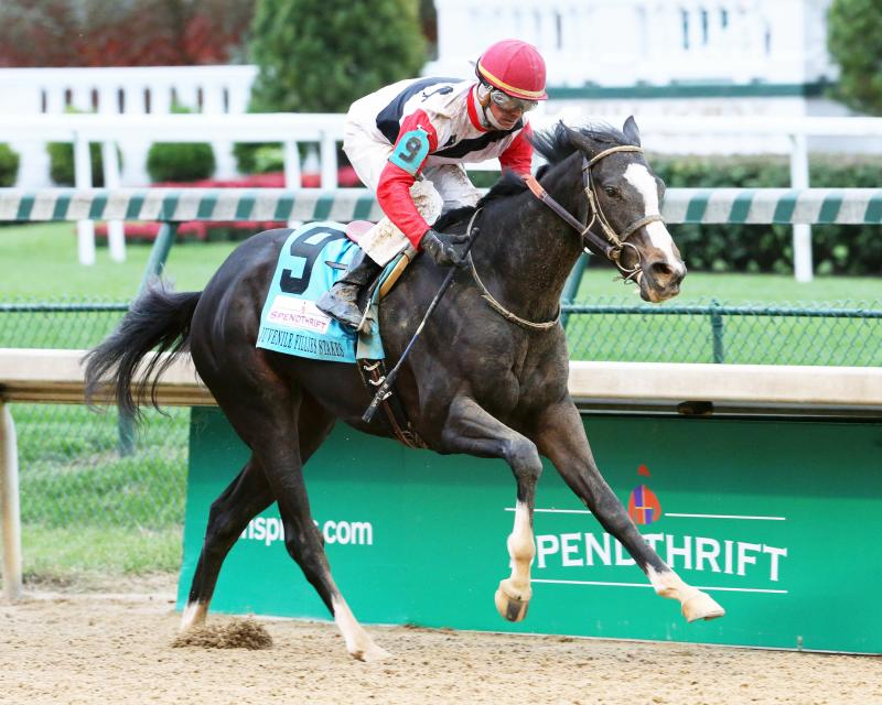 20171029 SULTRY - The Spendthrift Juvenile Filly Stallion Stakes CD (Coady) Finish 2