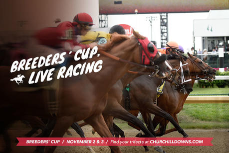 Breeders' Cup World Championships image