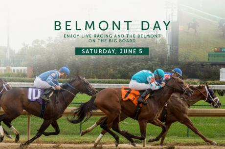 Belmont Stakes Watch Party image